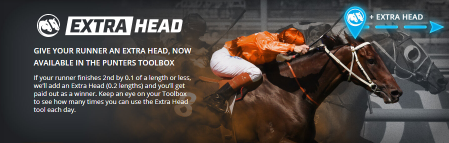 Neds Extra Head feature promotion